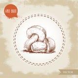 Hand drawn sketch style porcini mushroom composition. Fresh forest boletus edulis. Italian food ingredient. Fresh market product Royalty Free Stock Photography