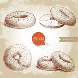 Hand drawn sketch style sesame bagels set. Bagel, sliced bagel with cream cheese. Daily fresh bakery illustration. Vintage drawing of fresh breakfast Stock Photos