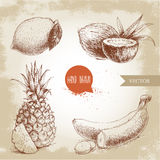 Hand drawn sketch style tropical fruits set. Bananas, coconuts, pineapple with slice and lemon with leaf. Royalty Free Stock Images