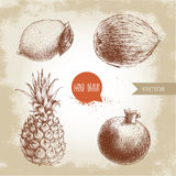Hand drawn sketch style tropical fruits set. Lemon with leaf, coconut, pineapple and pomegranate. Stock Image
