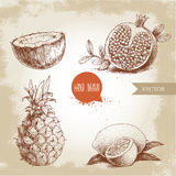 Hand drawn sketch style tropical fruits set. Slice of lemon with leaf, half of coconut, pineapple and half of pomegranate. Royalty Free Stock Images