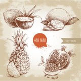 Hand drawn sketch style tropical fruits set. Slice of lemon with leaf, half of coconut, pineapple and pomegranates with seeds. Vintage eco food illustration Stock Photos