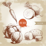 Hand drawn sketch style vegetables set. Half of cabbages, beet roots, potatoes and carrot with leafs. Farm fresh food on grunge vintage background Stock Photos