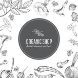 Hand drawn sketch vegetables, Vector illustration mushrooms, olive, pepper, onion  on white, Ideal for use in Stock Photography