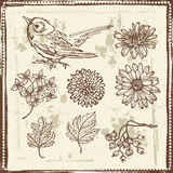 Hand drawn sketches of flowers and small bird Stock Image