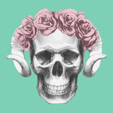 Hand-drawn Skull with horns and floral head wreath. Vector  elements Stock Photography
