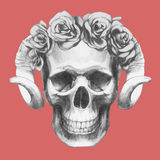 Hand-drawn Skull with horns and floral head wreath. Vector  elements Royalty Free Stock Photography