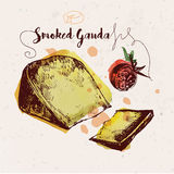 Hand drawn smoked gouda cheese and cherry tomato Royalty Free Stock Image