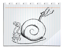 Hand drawn snail Stock Image