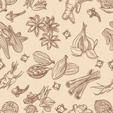 Hand drawn spices seamless pattern Royalty Free Stock Photos