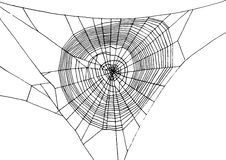 Free Hand Drawn Spiderweb Stock Photography - 76932072