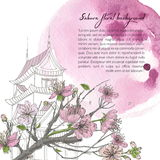 Hand drawn spring background with blooming sakura, japanese house and watercolor stain. Design template. Hand drawn spring background with blooming sakura Stock Photography