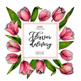 Hand drawn spring floral banner. Colored pink tulip. Flower delivery. Hand drawn detailed engraved illustration. Good. For Easter, Woman day, Valentine greeting Stock Images