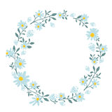Hand drawn spring wreath with camomile flowers Royalty Free Stock Photography
