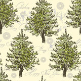 Hand drawn  spruce trees  seamless pattern Stock Photo