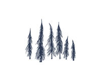 Hand drawn spruce trees Royalty Free Stock Image