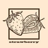 Hand drawn strawberries Stock Photos