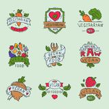 Hand drawn style of bio organic eco healthy food label vegan vegetable vector illustration vegetarian natural farm sign. Stock Photography