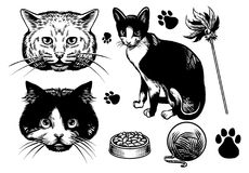 Hand drawn style cat collection Royalty Free Stock Photography