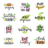 Hand drawn style set of bio organic eco healthy food labels logo templates and vintage vegan elements in green color Stock Photo
