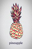 Hand drawn stylized pineapple. Vector ananas fruit isolated on transparent background. Graphic illustration for logo or icon. Hand drawn stylized pineapple stock illustration
