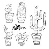 Hand drawn succulent and cactus set. Doodle plants in pots. Vector line art set with cute house interior plants Royalty Free Stock Images