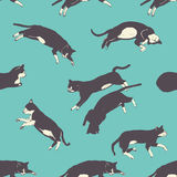 Hand drawn sweet cats sleeping pattern Royalty Free Stock Photography