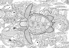 Hand drawn swimming turtle with high details. Swimming turtle with high details for anti stress coloring page, illustration in tracery style. Abstract pattern Stock Photo