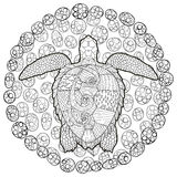 Hand drawn swimming turtle with high details Royalty Free Stock Photos