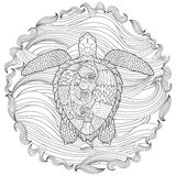 Hand drawn swimming turtle with high details. For anti stress coloring page, illustration in zendoodle style. Sketch for tattoo, poster, print, t-shirt in Stock Photos