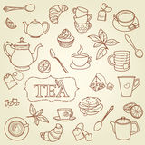 Hand drawn tea doodle concept vector Royalty Free Stock Photo