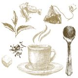 Hand drawn tea set Stock Images