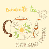 Hand drawn teapot with camomile tea. Royalty Free Stock Images