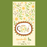 Hand drawn template packaging tea, label, banner, poster, identity, branding. Stock Photography