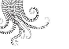 Hand Drawn Tentacle vector Illustrations. Hand Drawn Tentacle. Black and white line drawing of squid. vector Illustrations Stock Images