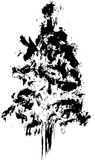 Hand drawn textured fir tree vector illustration. Silhouette of the grunge pine tree. Royalty Free Stock Photo