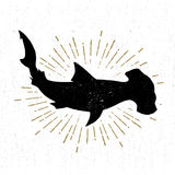 Hand drawn textured icon with hammerhead shark vector illustration Royalty Free Stock Photography