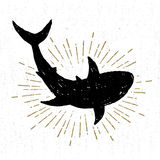 Hand drawn textured icon with shark vector illustration.  Stock Photo