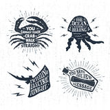 Hand drawn textured vintage labels set with vector illustrations. Hand drawn textured vintage labels set with cancer, jellyfish, letter in bottle vector Stock Photography