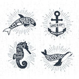 Hand drawn textured vintage labels set with vector illustrations. Hand drawn textured vintage labels set with killer whale, anchor, sea horse, fur seal vector Royalty Free Stock Photos