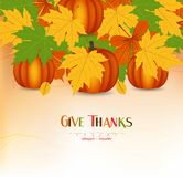 Hand drawn thanksgiving greeting card with leaves, pumpkin Stock Photography