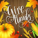 Hand drawn thanksgiving greeting card with leaves Stock Photos