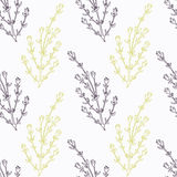 Hand drawn thyme branch stylized  Stock Images