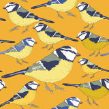Tit birds. Seamless pattern. Vector illustration on yellow background. Hand drawn tit birds. Seamless pattern. Vector illustration on yellow background vector illustration