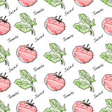 Hand drawn tomato pattern. Royalty Free Stock Images