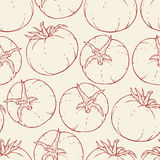 Hand drawn tomato pattern Stock Photography