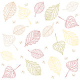 Hand drawn transparent autumn tree leaves  pattern background. Stock . Flat design Stock Images