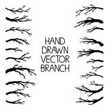 Hand drawn tree branches set, vector illustration. Royalty Free Stock Images