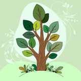 Hand drawn tree (color) Stock Images