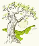 Hand drawn tree symbol isolated vector Royalty Free Stock Photography